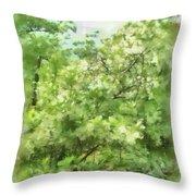 Greenstone Trail Throw Pillow