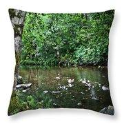 Greenwood Creek Throw Pillow