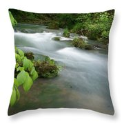 Greer Spring Branch 2 Throw Pillow