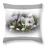 greeting card - Apple Blossoms  Throw Pillow