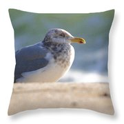Greeting The Morning Throw Pillow
