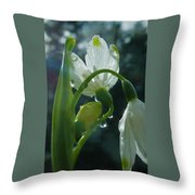 Greetings Throw Pillow