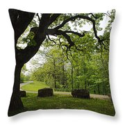 Greetng Another Spring Throw Pillow