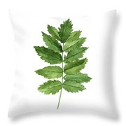 Gren Fern, Forest Plant Home Garden, Minimalist Abstract Poster Throw Pillow