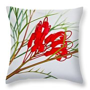 Grevilliea At Pilgrim Place In Claremont-california   Throw Pillow