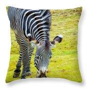 Grevys Zebra Left Throw Pillow