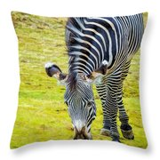 Grevys Zebra Right Throw Pillow