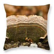 Grey Bracket Fungi Throw Pillow
