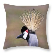 Grey Crowned Crain Of Africa 2 Throw Pillow