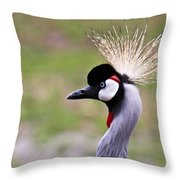 Grey Crowned Crain Of Africa Throw Pillow