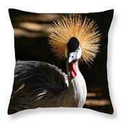 Grey Crowned Crane Throw Pillow