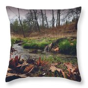 Grey Day In The Glen Throw Pillow
