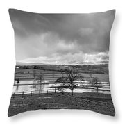 Grey Day Throw Pillow