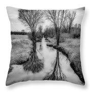 Grey Divide Throw Pillow