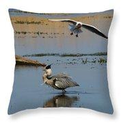 Grey Heron Being Mobbed Throw Pillow