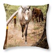 Grey Horse Throw Pillow