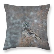 Grey In Snow Throw Pillow