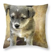 Grey Puppy Throw Pillow