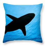 Grey Reef Shark Silhouette Throw Pillow