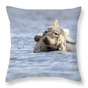 Common Seal Throw Pillow
