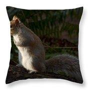 Grey Squirel Throw Pillow