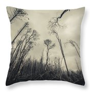 Grey Winds Bellow  Throw Pillow