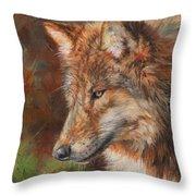 Grey Wolf Face Throw Pillow
