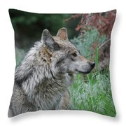 Grey Wolf Profile 2 Throw Pillow