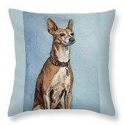 Greyhound Commission Painting By Irina Sztukowski Throw Pillow