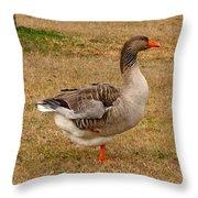 Greylag Goose 1 Throw Pillow