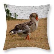 Greylag Goose 2 Throw Pillow