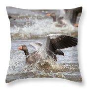 Greylag Goose Landing Throw Pillow