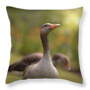 Greylag Goose Throw Pillow