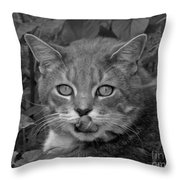 Griffin In Back And White Throw Pillow