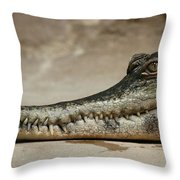 Grin And Bare It Throw Pillow