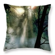 Grings Mill 1057 Throw Pillow