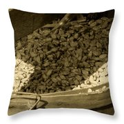 Grist For The Mill Throw Pillow