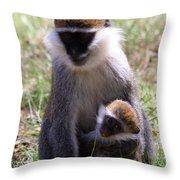 Grivet Monkey At Lake Awassa Throw Pillow