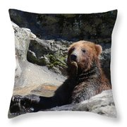 Grizzlies Snacking On Things They Find In A River Throw Pillow