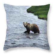 Grizzly At Yellowstone Throw Pillow