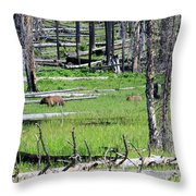 Grizzly Bear And Cub Cross An Area Of Regenerating Forest Fire Throw Pillow