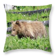 Grizzly Bear Cub In Yellowstone National Park Throw Pillow