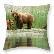 Grizzly Bear Family  Throw Pillow