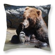Grizzly Bear Licking His Paw While Seated In A Muddy River Throw Pillow