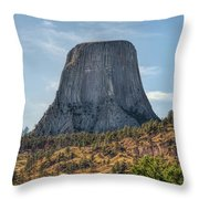 Grizzly Bear Lodge Throw Pillow