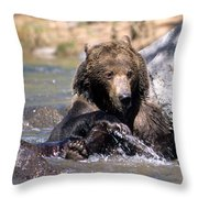 Grizzly Bear Plays In Water Throw Pillow