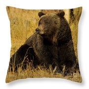 Grizzly Bear-signed-#6721 Throw Pillow