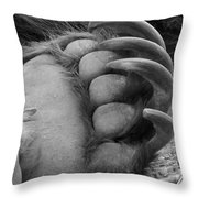 Grizzly Claws Throw Pillow