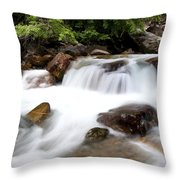 Grizzly Creek Throw Pillow by Barry C Donovan