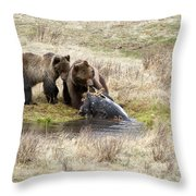 Grizzly Dinner Throw Pillow